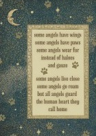 Some Angels Have Wings - Some Angels Have Paws Pet Loss Card