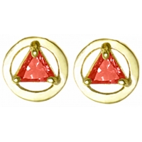14k Gold Earrings Stud with Birthstone