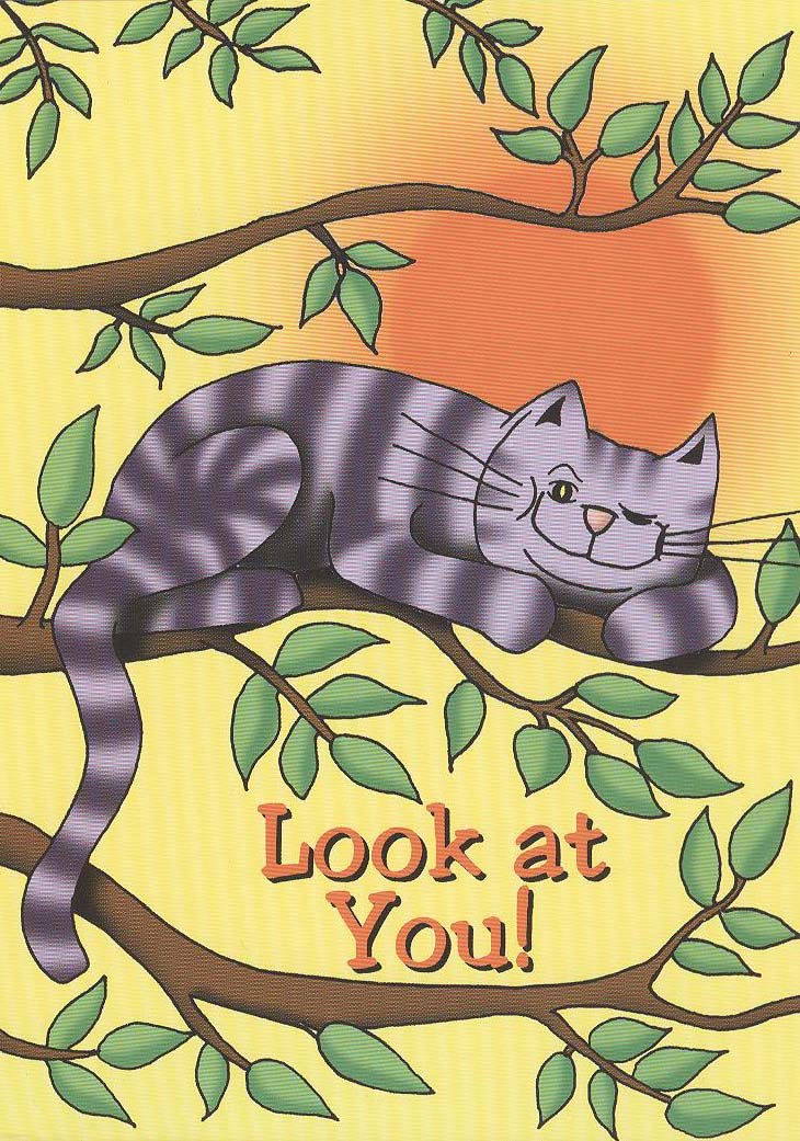 Look At You Cat Card