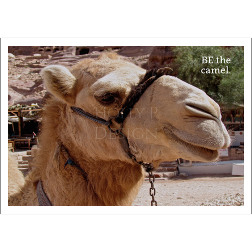 Be the Camel