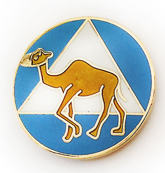 AA Symbol Camel Pin - Blue and White