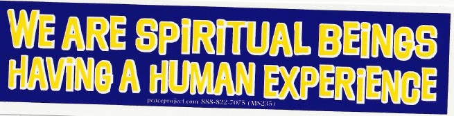 We Are Spiritual Beings Sticker